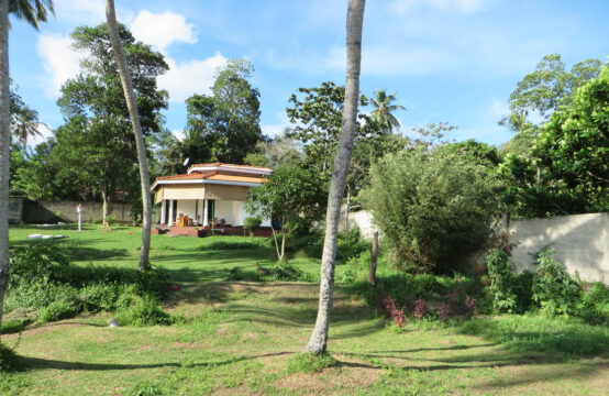 Stunning paddy field view property for sale