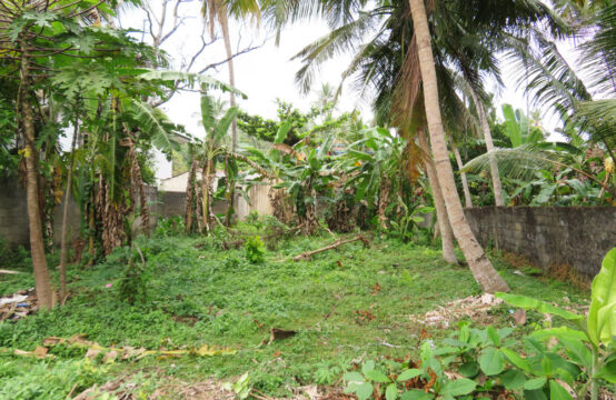 Commercial land  for sale in a popular tourist area
