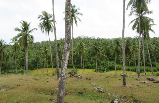 Land ideal for large project at Rathgama – 5 Acres