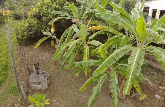 Land for sale at Averihena Road – Colombo 5