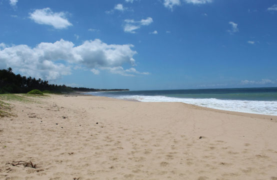 Extensive beachfront property for sale – 9 Acres