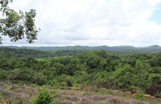 Development land for sale at Pilana – 3 Acres