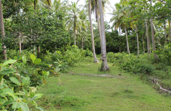 Land for sale close to popular beach – 2 Acres