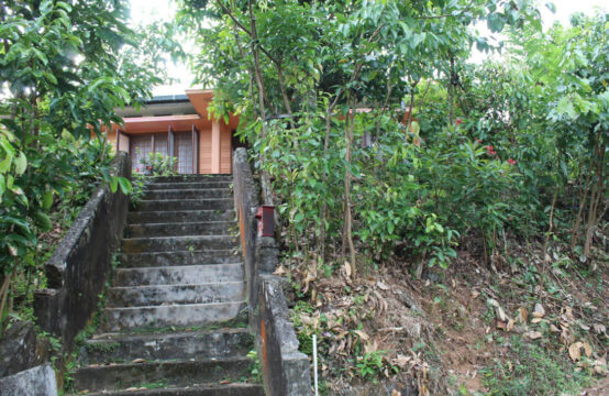 Cinnamon land with 4 bedroom house for sale