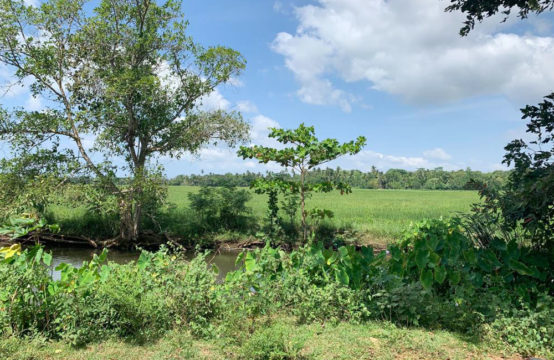 Land for development close to Ranna town