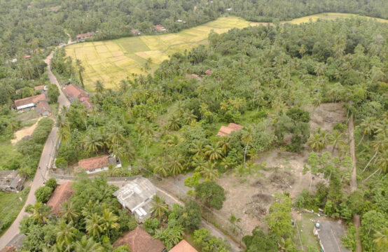 Colonial style house for renovation – 2.5 Acres
