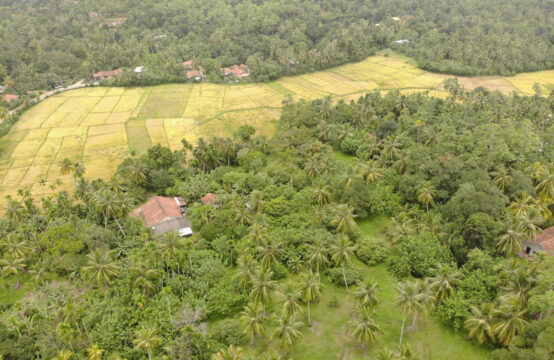 5 Bedroom house for sale in Midigama – 3.4 Acres