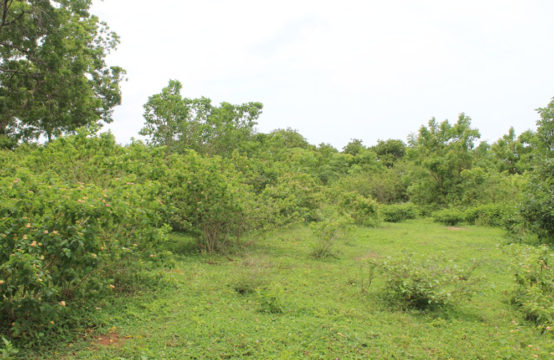 Land for development in Rekawa – 2 Acres