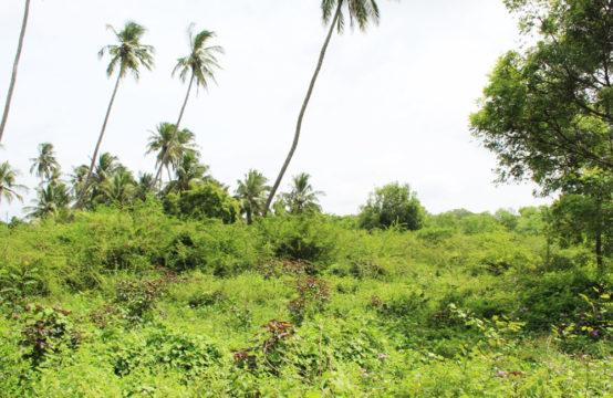 Development land for sale in Kahandamodara – 1.5 Acres