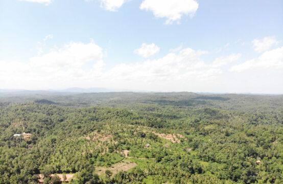 Development land for sale in Dandeniya – 11.6 Acres