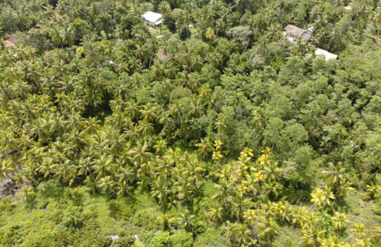 Land for sale in Habaraduwa – 1.4 Acre