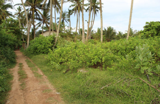 Land for sale close to Beliwatta beach