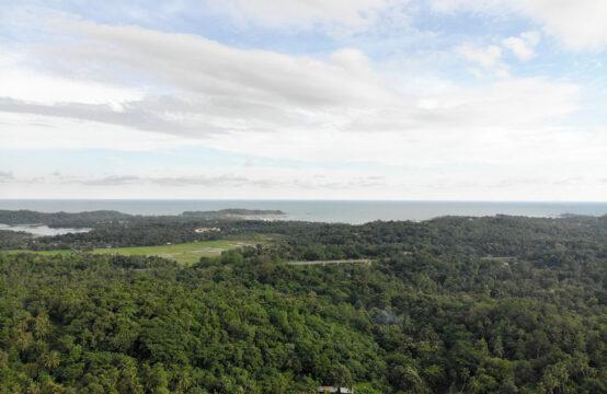 Land for sale in Mahawella village – 2.5 Acre