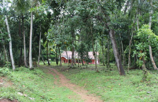 Large plot 3 Bedroom house for sale – 2.5 Acres