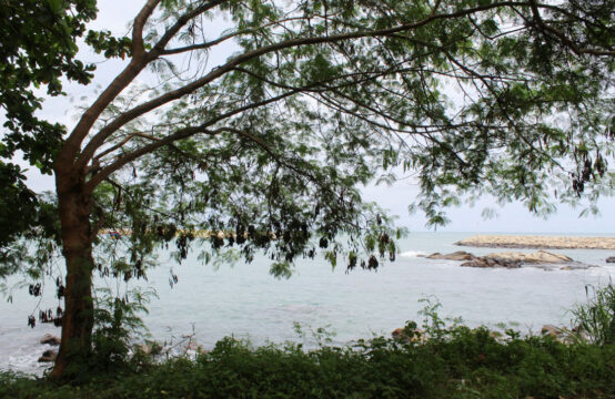 Land for sale close to Nilwella harbour