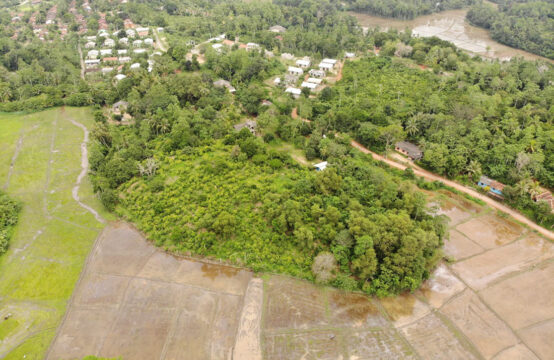 2.6 Acre land for sale close to Midigama beach