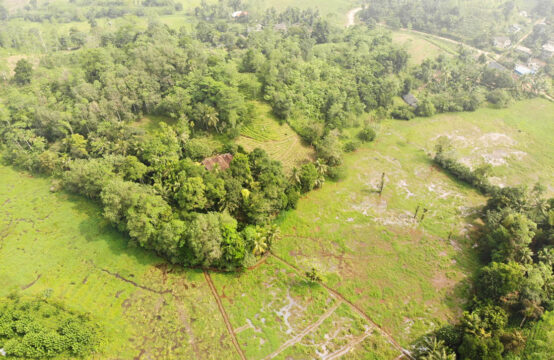 Extensive land for sale with 4 bedroom house