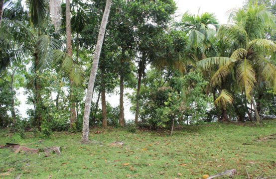 Land for sale on Koggala lake with part built house