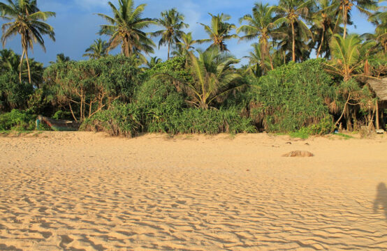 Land for sale on Hikkaduwa beach