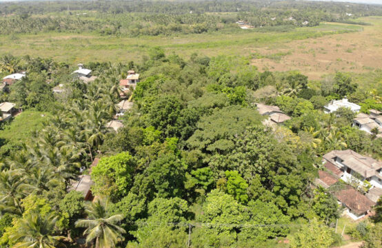 Land for sale in Bandaragama 1.6 Acre