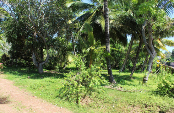 Land ideal for villa or a larger project 1 Acre