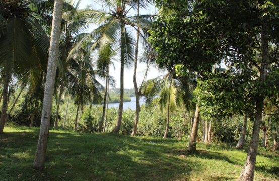 Beautiful property with picturesque views of Madu river