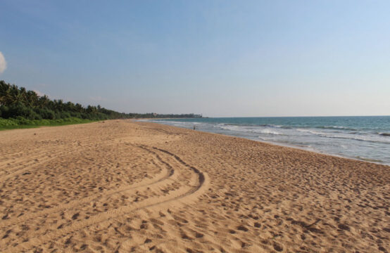 Land for sale on Induruwa beach 1 Acre