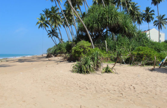 Extensive beachfront property for sale in Kosgoda 5.5 Acres