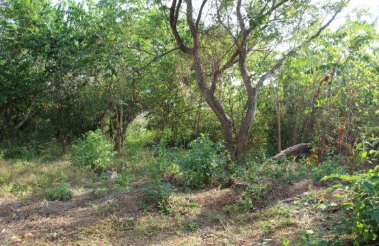 Land for sale close to Amanwella beach