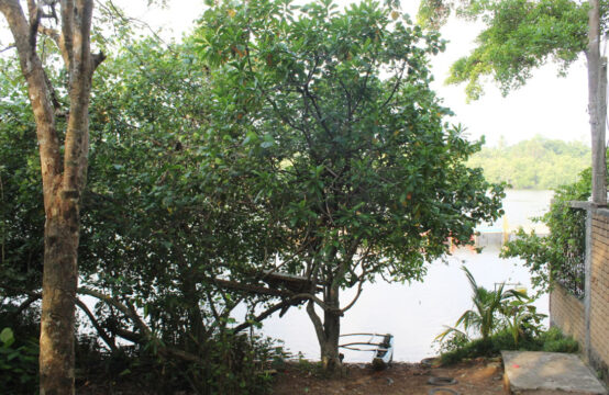 Beautiful riverfront land with old house for sale
