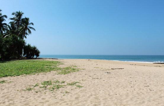 Beachfront land for sale on Kosgoda beach