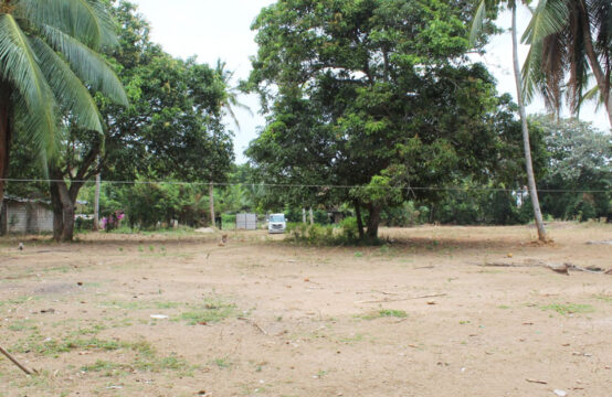 Land for sale in a popular area 1.1 Acre