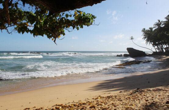 Stunning beachfront land for sale in Dalawella