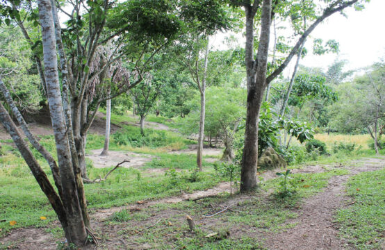 Land for sale in Kathaluwa 5 Acres