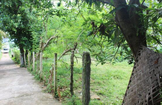 Land for sale close to Hikkaduwa beach