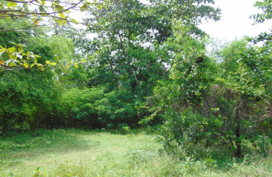 Land for sale close to Bentota beach