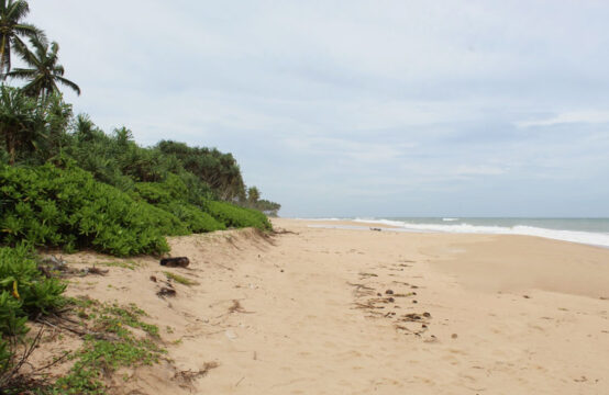 Land for sale on the beach