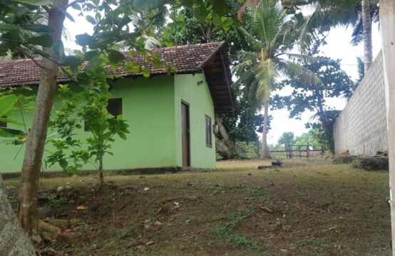 Land for sale close to Induruwa beach