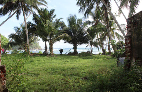 Land for sale on Talalla beach